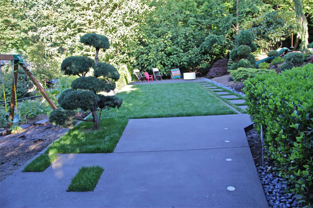 Backyard concrete edging