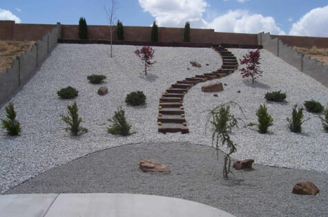 Xeriscape backyard concrete